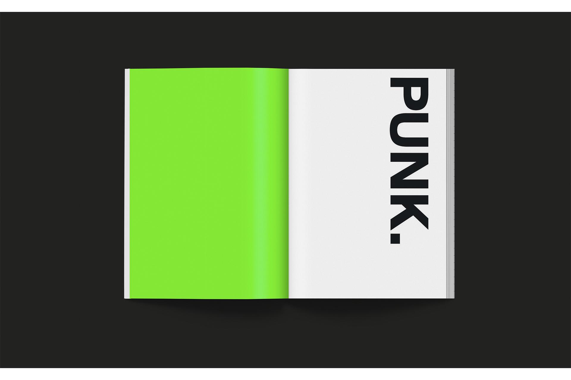 Sans-titre-1_0000s_0002_punkprogp1